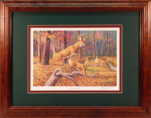 """Fleeting Moment"" by wildlife artist Randy McGovern!"